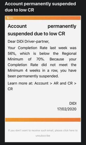 didi permanent suspension